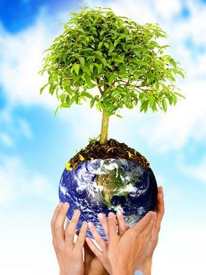 La tutela degli interessi collettivi in materia ambientale